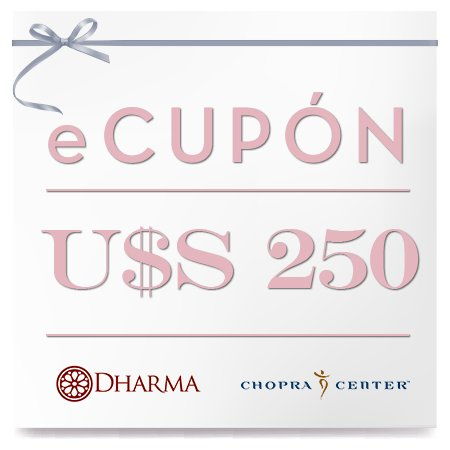 eCupon US $ 250 - Cesargamio.net