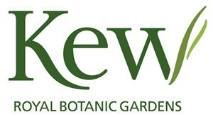 Clients - Kew Royal Botanic Gardens - CesarGamio.com